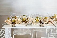 Modern Thanksgiving / by Lauren (Elleby Design)