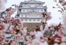 Japan ♡ / Take a walk through inspiring Japan and its culture.