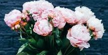 Flowers for the Home / If you are looking for an affordable and beautiful way to brighten up your home, then flowers are the answer. A vase of peonies, a mason jar of roses or a crate of hydrangeas, the choices are endless.