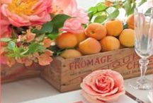 Color Trends 'Fresh Peaches' / soft peach + pink + orange + green + brown / by Angel Hartline