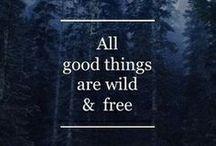 Quotes. / by Ellen Tumbarella