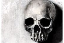 Skulls / by Chela Marshall
