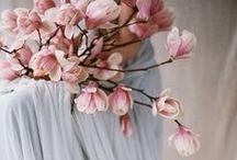 Color Trends 'Rose Quartz & Serenity'