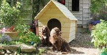 Buckland Dog Kennel / The Buckland Kennels are designed with a large overhanging porch to protect the doorway and give shelter from the rain. It has an easy opening roof, with heavy duty galvanised hinges, for easy access to the inside of the kennel.