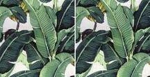 WALLPAPER / Tropical Wallpaper