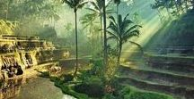 BALI / Bali inspiration