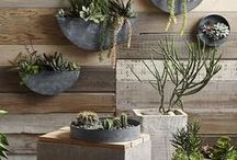 Grounded: Artisan / Natural materials, traditional methods, modern application. Earthy decor.
