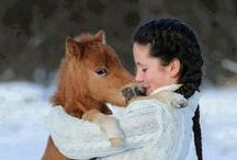 Animals / by Brookelynne ..