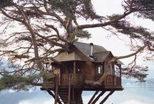 Treehouses / Epic and unique Treehouses.