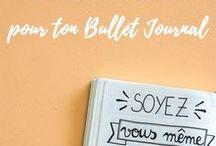 Bullet Journal - Développement personnel / Des pages de développement personnel dans le Bullet Journal