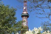 Odori Park / 札幌の大通公園の情景。