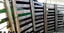 Custom Built Pallet Garden Accessories, Screens & Fences / Custom built pallet wood furniture, Durban, Kwa-Zulu Natal. We will build your furniture and decor to your specifications and requirements. Indoor and outdoor. If it's made from wood, we'll build it. #palletfurnituredurban #palletfurnitureamanzimtoti #outdoorpalletfurniture #palletfurniturekzn #custompalletfurniture #palletwoodfurniture #custompalletfurnituredurban #custompalletwoodfurniture   #naileditpalletfurniture #naileditpalletfurniture #custompalletfurniture