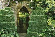 Glorious Gardening / by Melissa Hudson