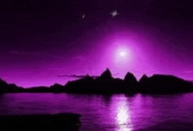 Pure Purple / by Susan Rice