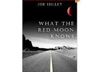 Books I Have Written / Books written and created by New York Times bestselling author Joe Hilley