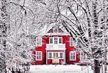 Christmas / by Lauren Jimeson