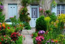 Curb Appeal / Gardens, lawn art, landscaping--you name it, whatever makes a home beautiful on the outside. / by Jane Ellen
