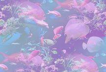 club paradise / mood board: colour scheme, concepts etc