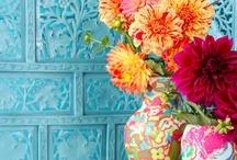 mix color flower