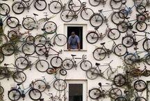 Bicycles / by Steve Garufi