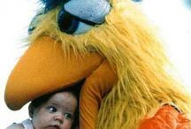 San Diego Chicken / One of the greatest mascot of all-time. The San Diego Chicken for the Padres.