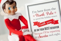 Elf On A Shelf  / by Elizabeth Wilson