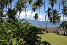 Playa Cativo's Private Beach