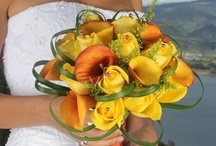 Fall Weddings / A beautiful selection of wedding ideas for a gorgeous fall wedding! / by Bridesign Wedding Flowers