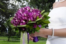 Perfect Wedding Flowers-Peruvian Lilies / Peruvian Lilies are among the most long lasting flowers; thus a perfect symbol of lasting devotion. The flower bodies are bell shaped and open to a star. The colors are bold and vibrant. This is a festive pack accented with flowing decorative ribbons. Visit http://bit.ly/BDPeruvianLilies to save on your wedding arrangements! / by Bridesign Wedding Flowers