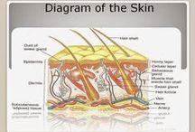Hair Tips + Skin & Beauty Tips / Hair styles, Hair Care, Skin Care, Facial beauty tips.