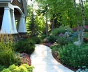 Landscaping / Landscaping, gardening, landscape, garden, outside, plants, flowers, shrubs, bushes, trees, how to, design, ideas