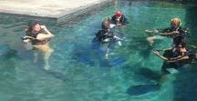 IDC Photos / PADI Pro courses, PADI Divemaster, PADI Instructor, IDC, Instructor Development Course, Scuba Diving