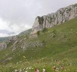 Eudoxia puise ses sources dans la Vallée des Merveilles