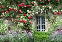 Garden dreams ~ House & Garden / Sometimes a house and a garden are so beautiful together! Also on this board: garden design. Please follow my other garden boards too!