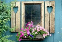 Windows / Windows & window boxes / by Helena Rentmeester