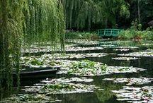 Water in the garden / Les bassins d'eau