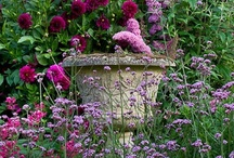 Pots & Urns / Garden ornaments like pots, urns, planters and garden statues