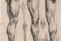 ANATOMICAL DRAWING / by Ronilton Costa