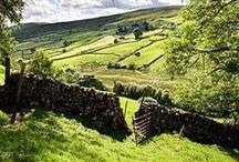 The Countryside / La Campagne