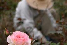 The joy of gardening / La joie du jardinage