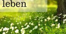 *ACHTSAM LEBEN - Gruppenpinnwand* / Achtsamkeit, Meditation und Tipps für ein leichteres Leben!   Gerne laden wir Dich ein mitzupinnen. Folge dafür der Pinnwand und sende eine kurze Nachricht an Ulrike (info@ulrikeduke.com) oder schicke eine Pinterestnachricht! Für Pinner: Für jeden geteilten Pin, bitte einen Pin teilen. :)