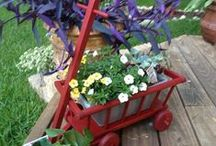 {Yard/Garden} / Inspired by Pinterest to get my creative self out. / by Anna Ibarra