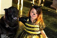KIANA / PETS & ANIMALS / Love all animals :)