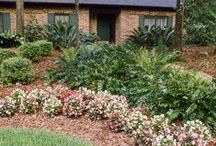 Waterwise Landscaping / Waterwise is a common sense way to landscape that conserves water and protects the environment.
