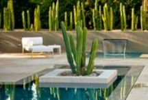 Great Landscape Designers  / There are so many! / by Jodie Cook Landscape Design