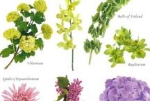 """Not a Meringue in Sight"" - Flowers, Bridal and Attendant Bouquets, Table Arrangements, Arbors, etc. / by Esme Cape"