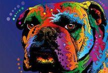 Bulldog L❤️VE / by Trisha