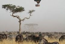 TRAVEL | WANDERLUST / travel tips & inspiration of the whole world  #travel #wanderlust