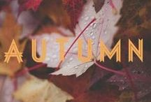 AUTUMN / in love with autumn: things to do in autumn & other inspirations