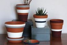 Simple Life | Plants / by Simple Scrapper